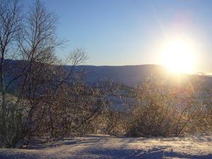 Utsikten fra Prestøyhytta
