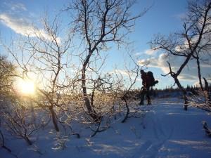 Starten på oppstigningen av Holmfjellet