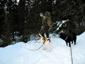 Vår eneste lille skitur til nærmeste utsiktspunkt