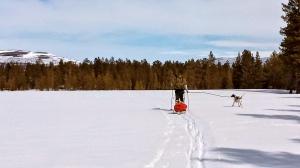 Skitur på bare 3-400 meter kan være fin den også!