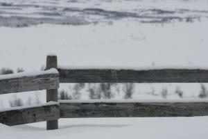 Gausdal Vestfjell var et utrolig flott område å være på tur i, med mye kulturhistorie blant annet med seterdrift og gjeting av unghester i mange tiår.