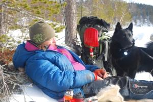Nok en lunsj i lyngen. Foto Mari Kolbjørnsrud
